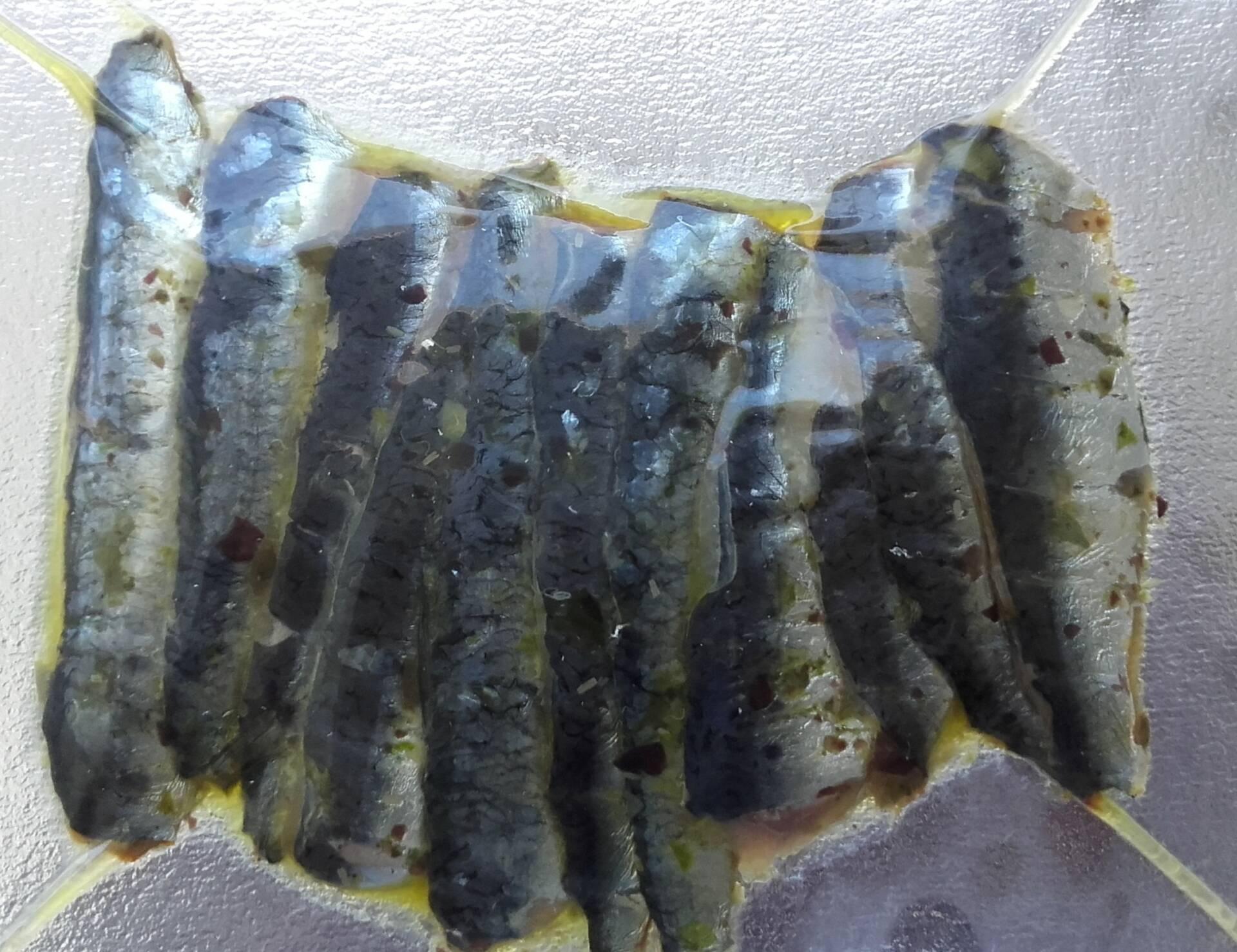 Sardines aux algues